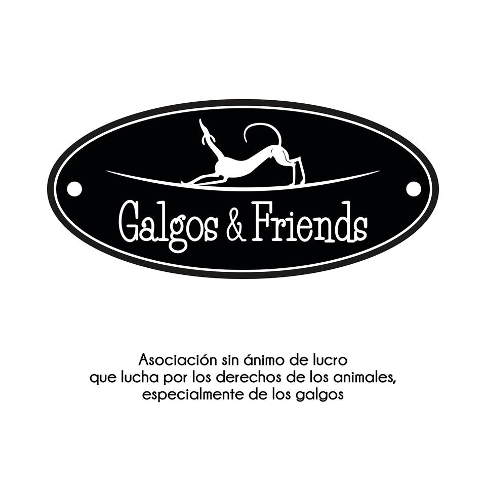 Galgos and Friends