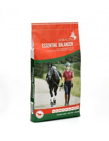 Essential balancer saracen 20 kg