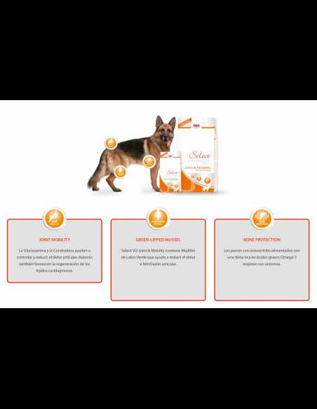 PICART SELECT VETERINARY JOINT&MOBILITY