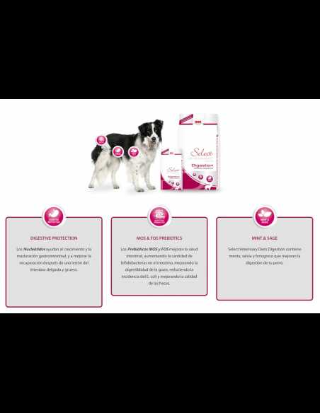 PICART SELECT VETERINARY DIGESTION