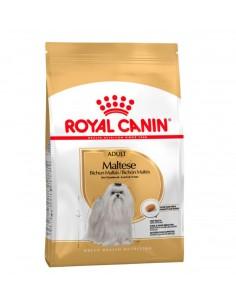 Royal Canin Bichon Maltes